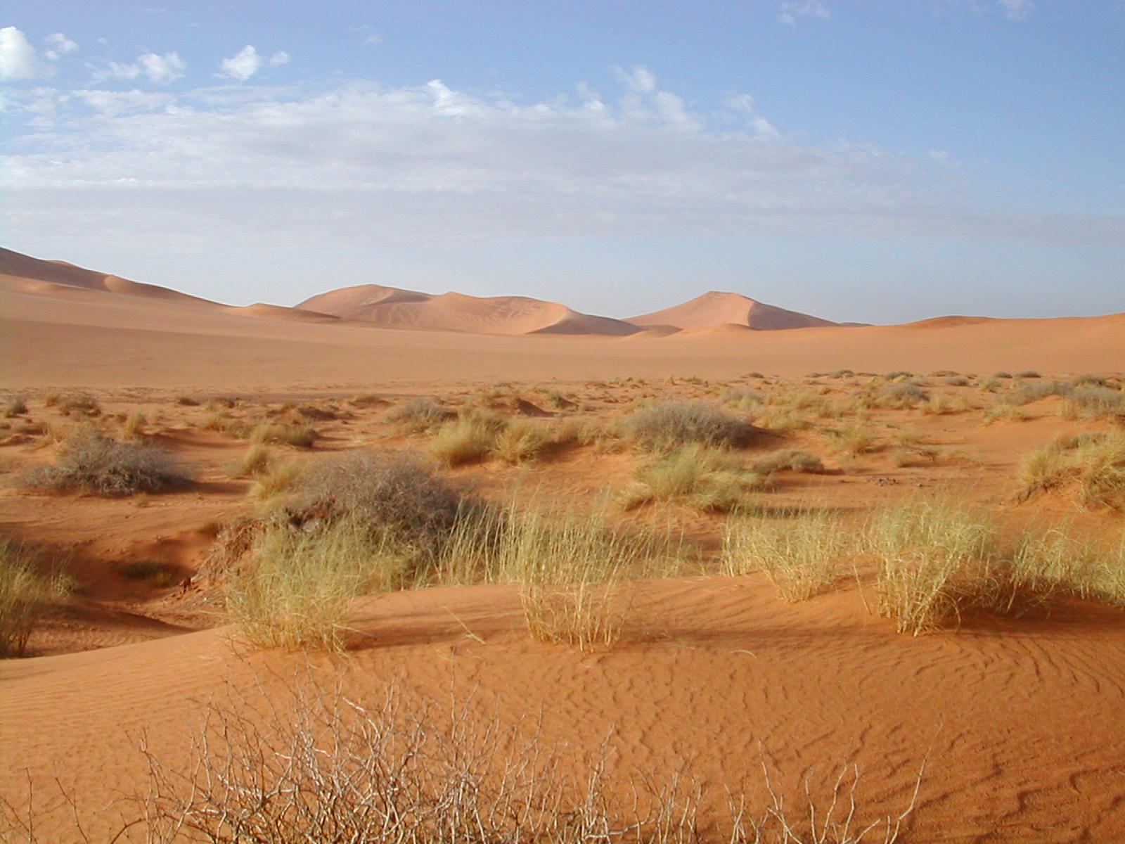 6 days from marrakech